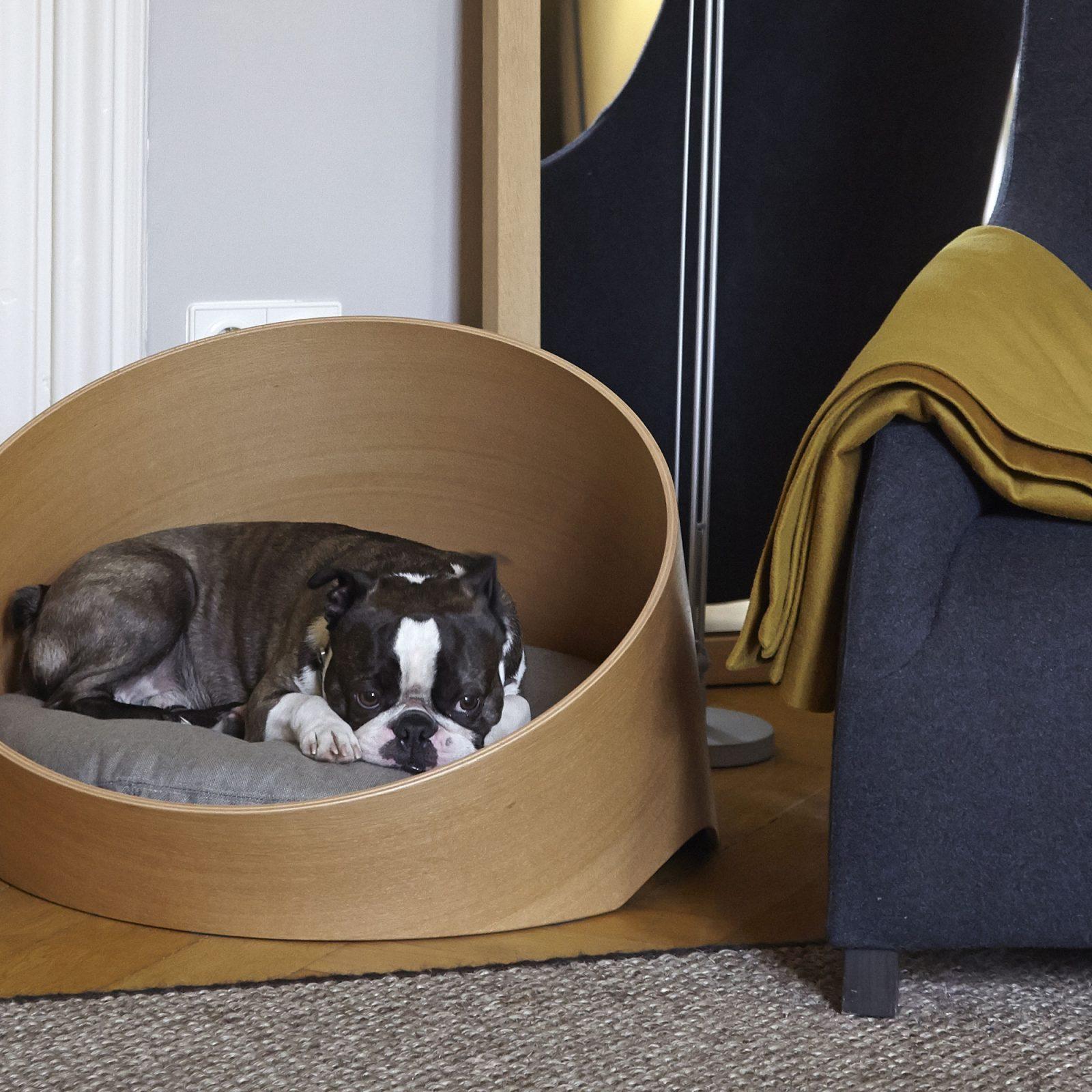 covo-dog-lounge-oak-sand-3