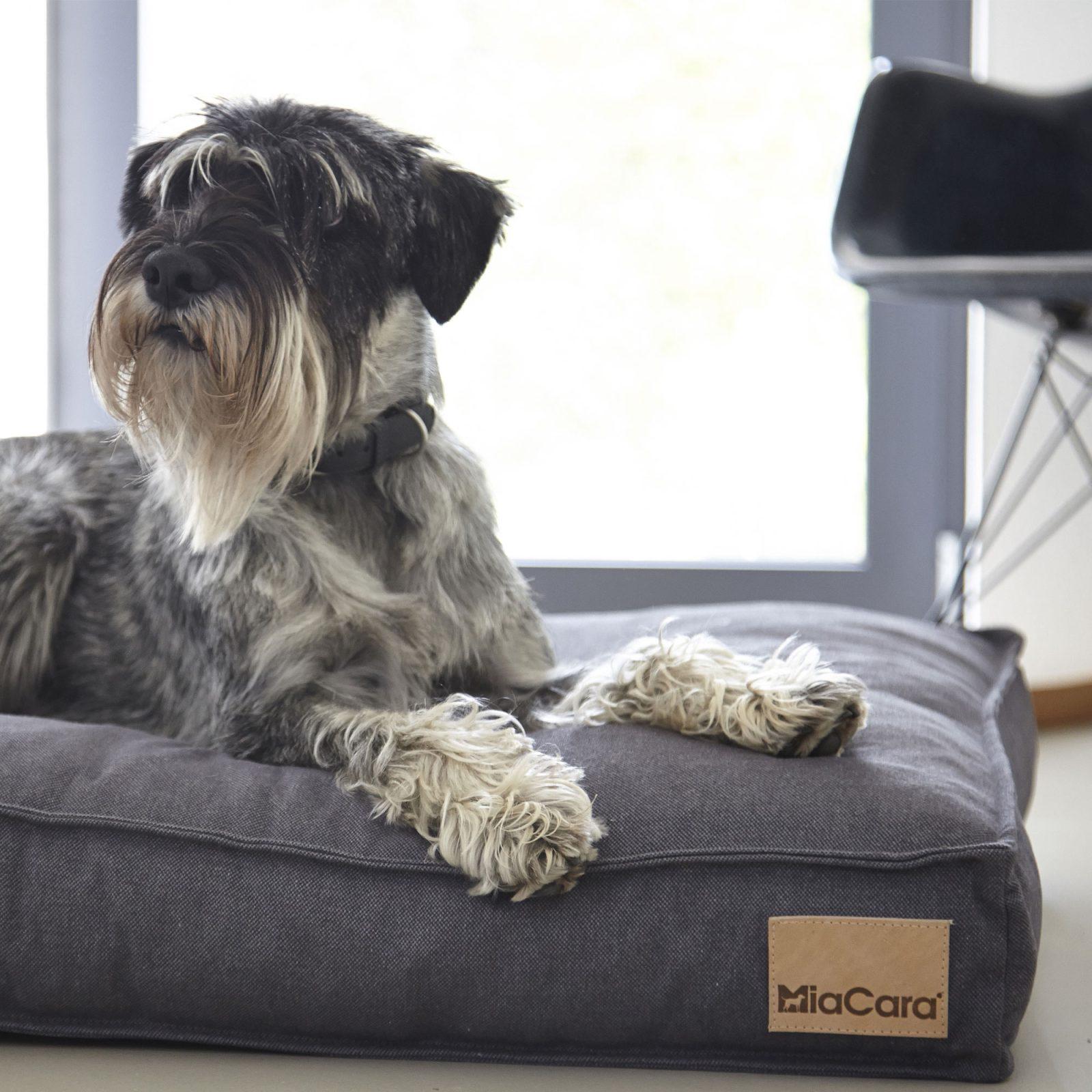 lino-dog-cushion-stone-4