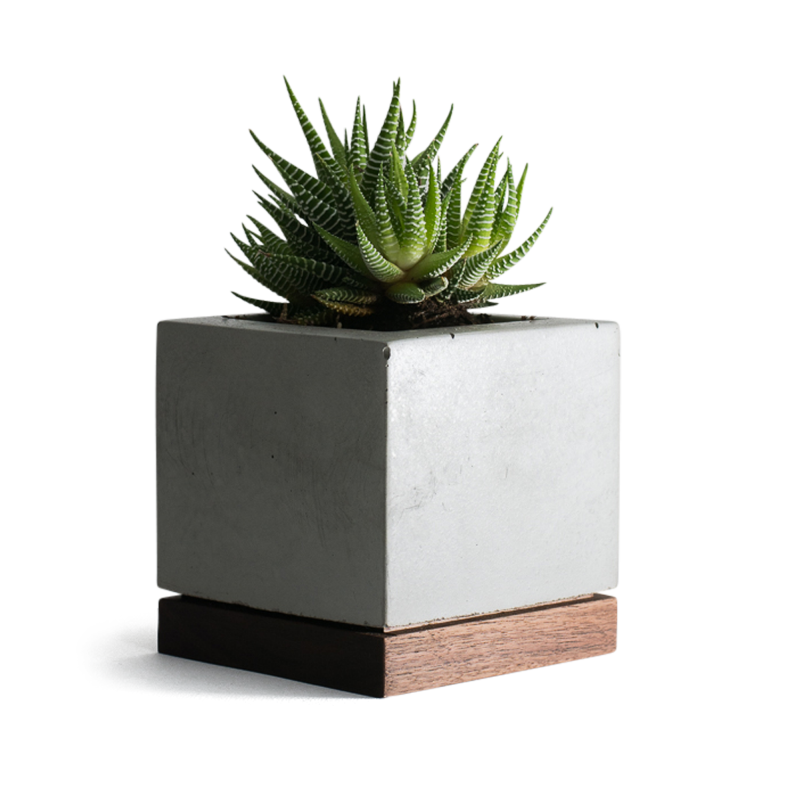 planter-concrete-and-walnut-1
