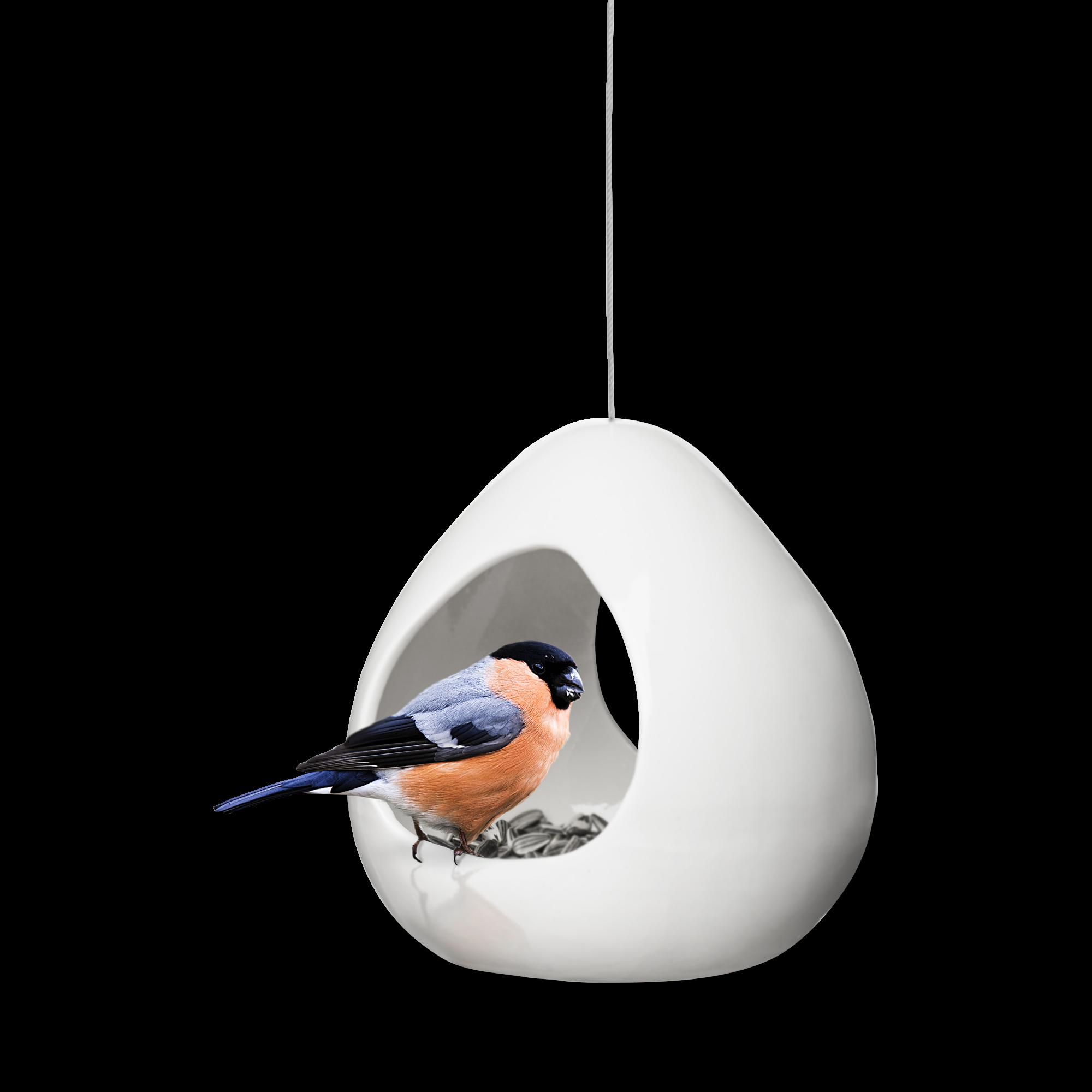birdy-bird feeder-1