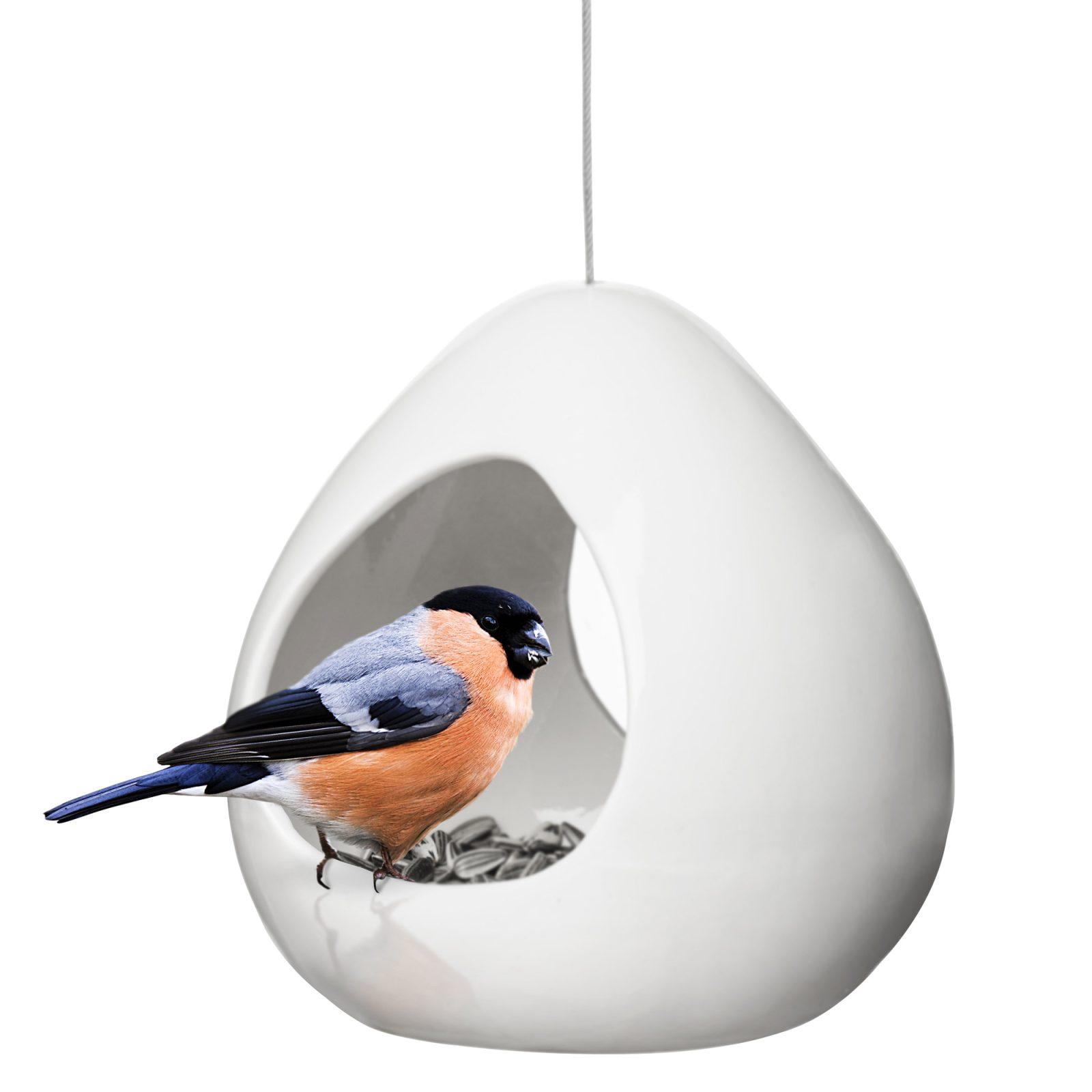 birdy-bird feeder-2